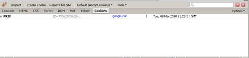 firecookie.jpg